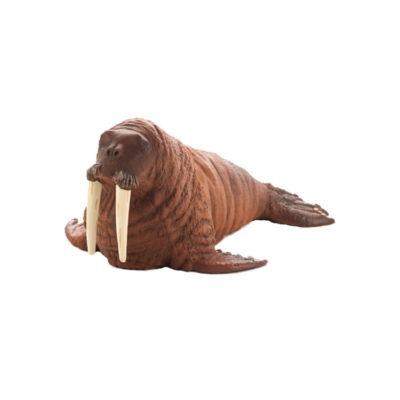 گراز دریایی موجو (mojo)