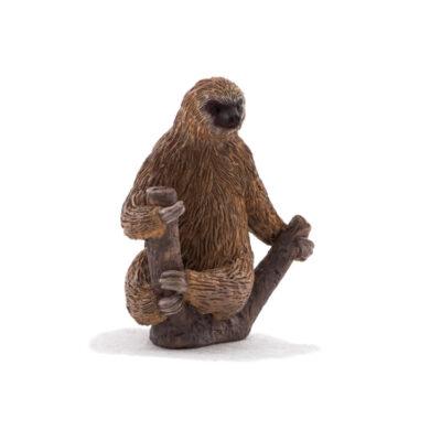 میمون تنبل موجو (mojo)