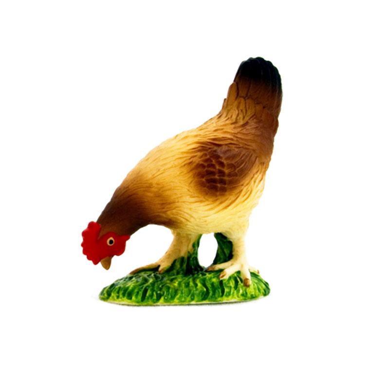 مرغ در حال عذا خوردن