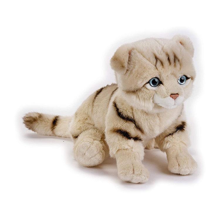 عروسک پولیشی گربه اسکاتلندی Lelly سری National Geografic